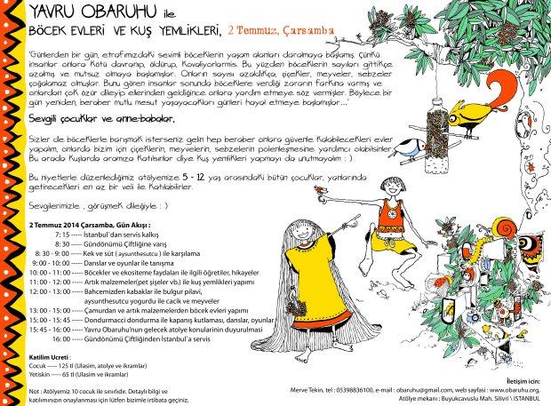 YAVRU OBARUHU ile  BöCEK EVLERi  VE KUş YEMLiKLERi, 2 Temmuz, Çarsamba